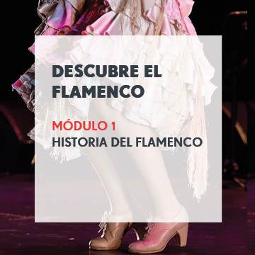 Descubre el Flamenco - Módulo 1